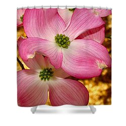 Dogwood In Pink Shower Curtain