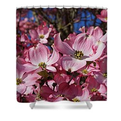Dogwood Tree Flowers Art Prints Floral Shower Curtain by Baslee Troutman