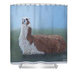 Dolly Llama Shower Curtain