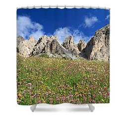 Shower Curtain featuring the photograph Dolomiti - Flowered Meadow  by Antonio Scarpi