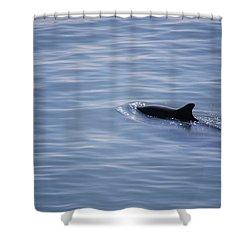 #lifemovesalonglikewater Shower Curtain