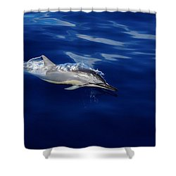 Dolphin Breaking Free Shower Curtain by John  Greaves