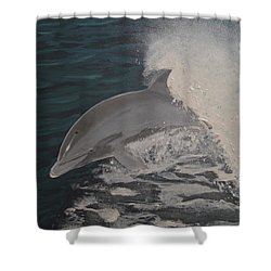 Dolphin In The Wake Shower Curtain