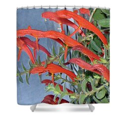 Shower Curtain featuring the photograph Dolphin Plant by Brenda Brown