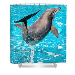 Dolphin Plays Shower Curtain by Michal Bednarek