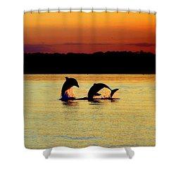 Dolphin Serenade Shower Curtain by Karen Wiles