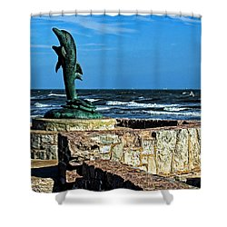 Dolphin Statue Shower Curtain by Judy Vincent