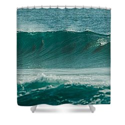 Dolphins In Wave 10 Shower Curtain