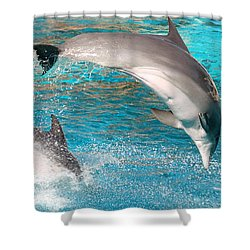 Dolphins Show Shower Curtain by Michal Bednarek