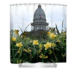 Dome Through The Daffodils Shower Curtain