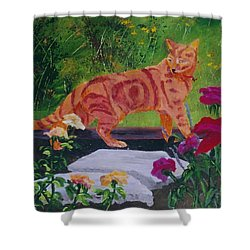 Domestic Tiger Shower Curtain