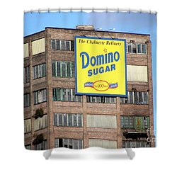 Domino Shower Curtain by Ed Weidman