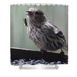 Done Eating That Seed Shower Curtain by Kym Backland