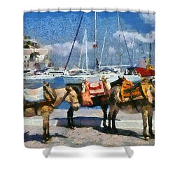 Donkeys Waiting For A Ride Shower Curtain
