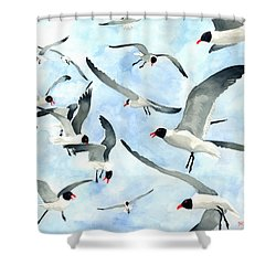 Don't Feed The Seagulls Shower Curtain