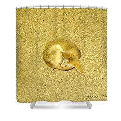 Shower Curtain featuring the photograph Don't Let Anything In The World Bother You by Verana Stark