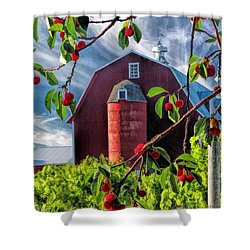 Door County Cherry Harvest Red Barn Shower Curtain