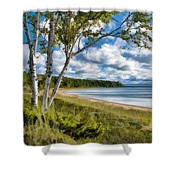 Door County Europe Bay Birch Shower Curtain by Christopher Arndt