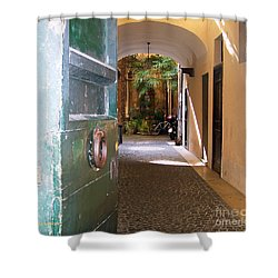 Door In Florence Shower Curtain