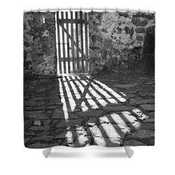 Door In The Sun Shower Curtain