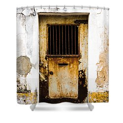 Door No 48 Shower Curtain