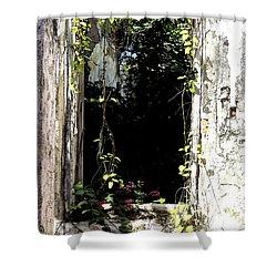 Doorway Delights Shower Curtain by Anne Mott