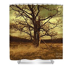 Dormant Beauty Shower Curtain