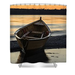 Dory At Dawn Shower Curtain by Marty Saccone