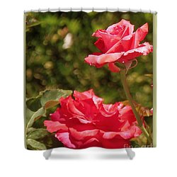 Shower Curtain featuring the photograph Double Beauty Roses by Bobbee Rickard
