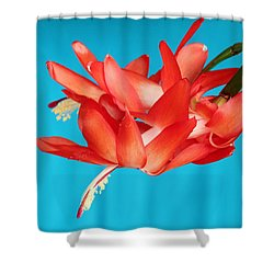 Double Bloom In Red Shower Curtain