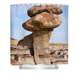 Double Caprock Shower Curtain by Vivian Christopher