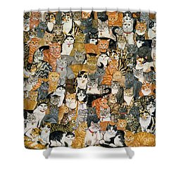 Double Cat Spread Shower Curtain