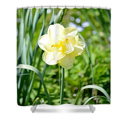 Double Charm Shower Curtain by Sonali Gangane