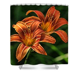Double Day Lilly Shower Curtain by Rick Friedle