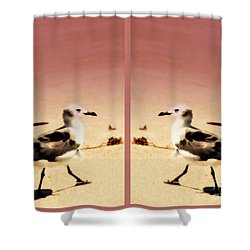Double Gulls Collage Shower Curtain by Susanne Van Hulst