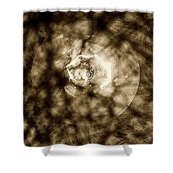 Double Insider Shower Curtain by Yevgeni Kacnelson