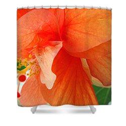 Double Peach Shower Curtain