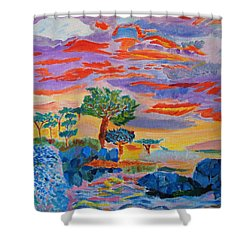 Shower Curtain featuring the painting Candy Coated Monterey Sunset by Meryl Goudey