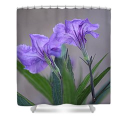 Shower Curtain featuring the photograph Double The Pleasure by Penny Meyers