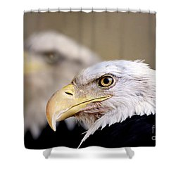 Double The Pride Shower Curtain by Ruth Jolly