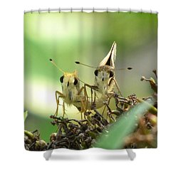 Shower Curtain featuring the photograph Double Trouble by Jennifer Wheatley Wolf