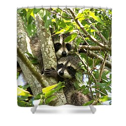 Double Trouble Shower Curtain