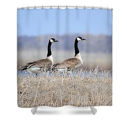 Double Vision Shower Curtain by Bonfire Photography