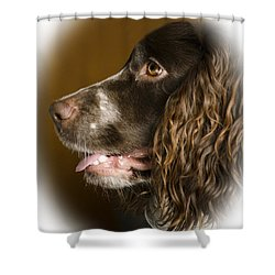 Dougie The Cocker Spaniel 2 Shower Curtain