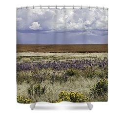 Dove Creek Fall Flowers Shower Curtain
