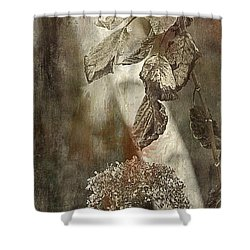 Down For Winter Shower Curtain