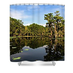 Down In The Bayou Shower Curtain by Lana Trussell