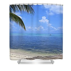 Down Island Shower Curtain by Stephen Anderson