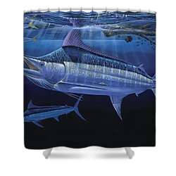 Down Under Off0055 Shower Curtain by Carey Chen