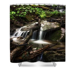 Downstream Shower Curtain by Mark Papke